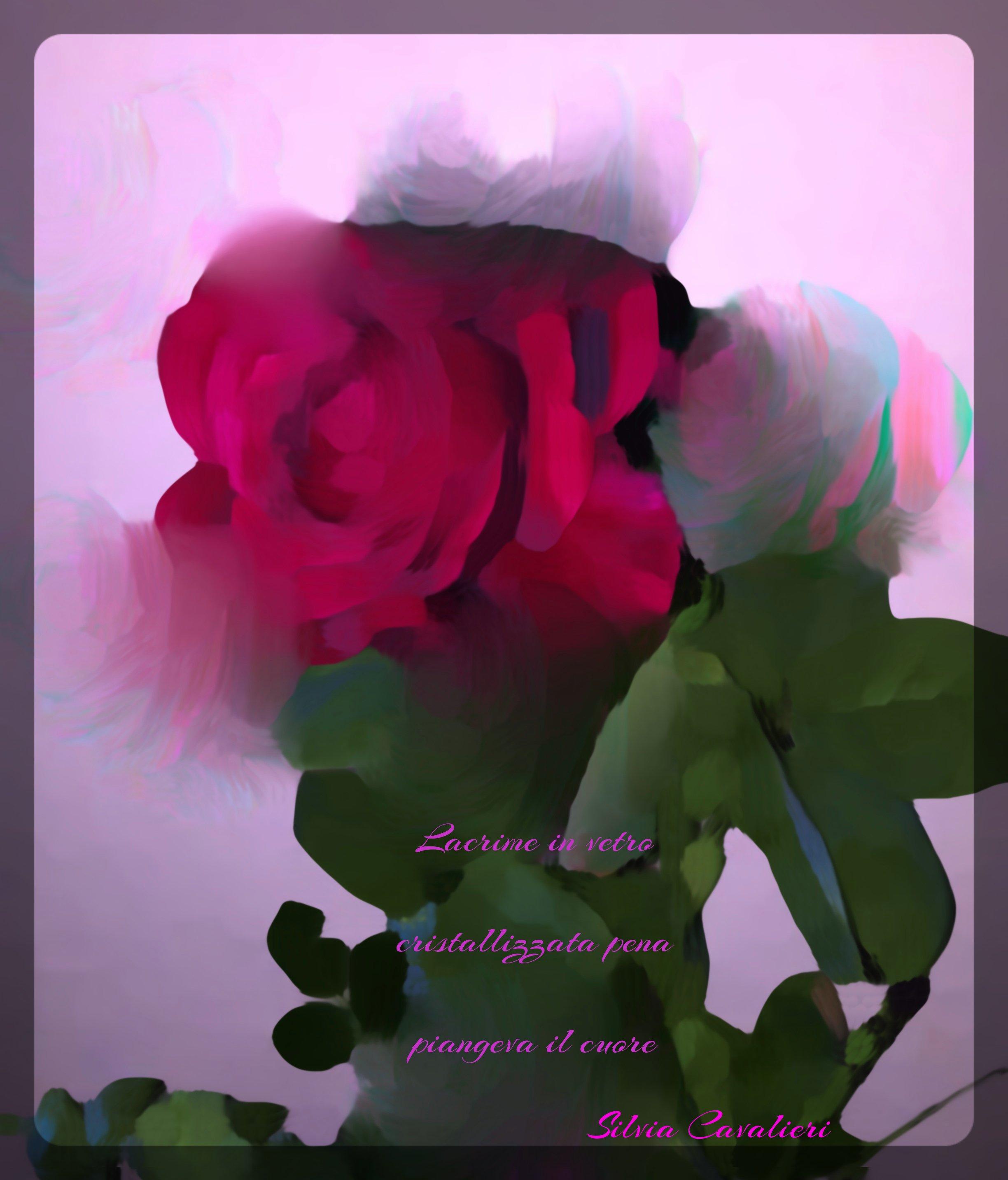 rosasfumatahaiku