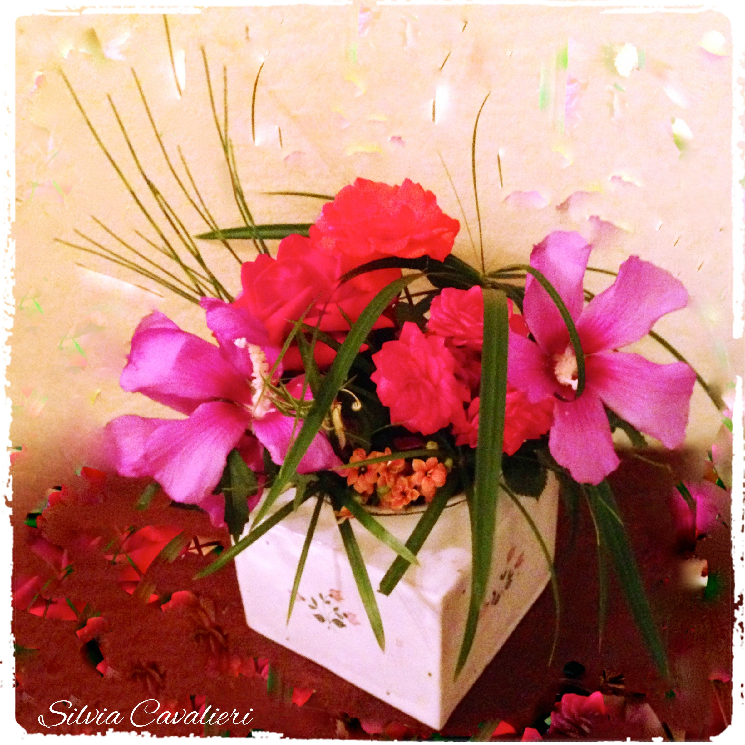 fioridiferragostodue