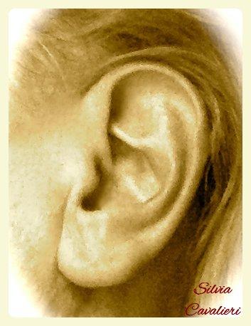orecchioocrauno