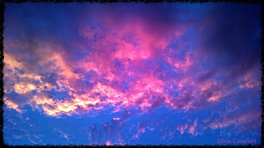 rosa tempesta