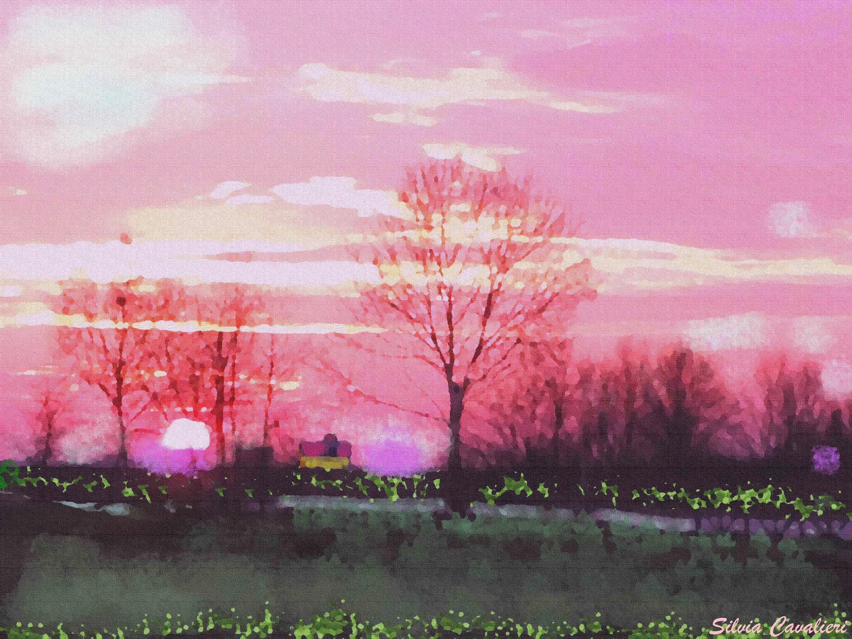 Tramonto rosa a Navacchio similolio