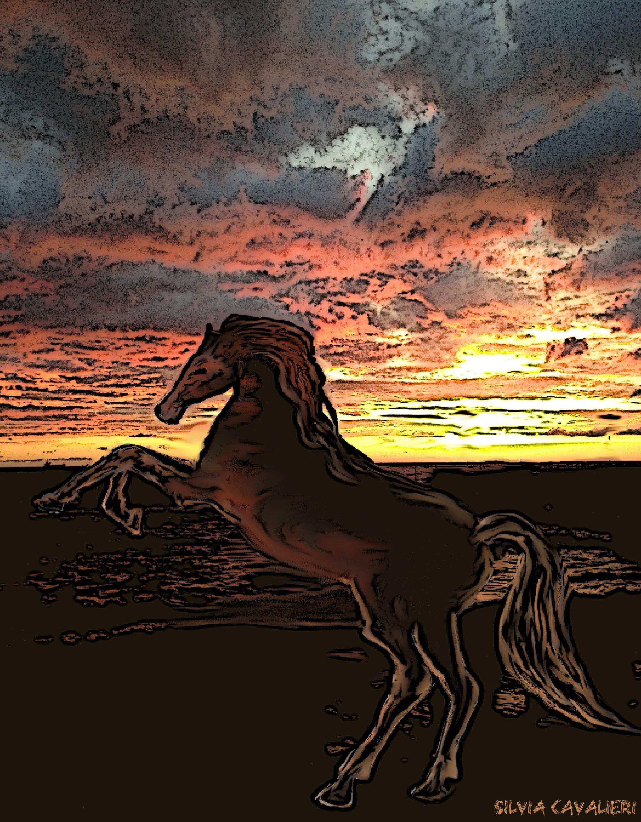 cavallo bizzarro e tramonto